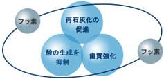 大阪市 阿倍野区 西田辺 えがしら歯科