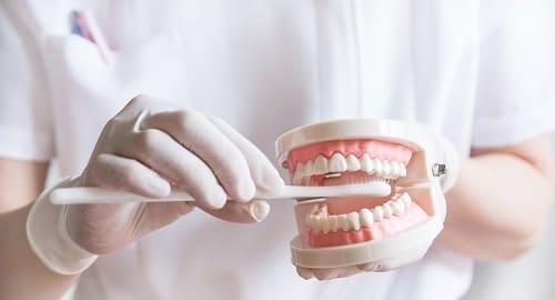 歯科衛生士による歯磨き指導