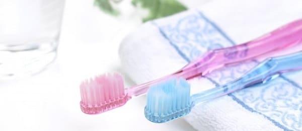 やわかめの歯ブラシ